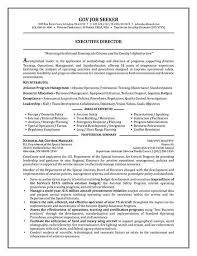 goverment job seeker resume template for executive director domestic policy experiencejpg existentialism essay introduction