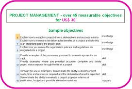 behavioural competence objectives topic project management project management competence
