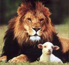 Image result for in like a lion out like a lamb