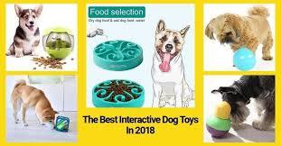17 Best <b>Interactive Dog Toys</b> under $30 In 2019 | Technobark