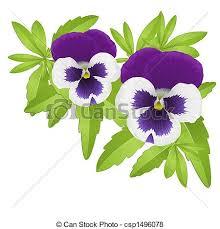Afbeeldingsresultaat voor viooltjes