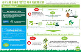 do gmos cause allergies gmo answers if you have more questions about gmos and allergies check out these answers