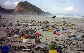 Resultado de imagem para lixo na praia cartoon