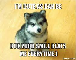 DIYLOL - I'm cute as can be but, your smile beats me everytime;) via Relatably.com