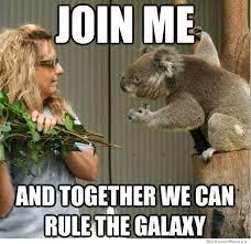 Koala Meme | WeKnowMemes via Relatably.com