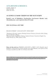 (PDF) Bouché's star of Bethlehem, Ornithogalum boucheanum ...