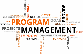 program management project success