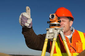 Image result for Surveyor