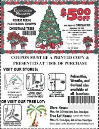 christmas coupon evergreen nursery click here for printable coupon