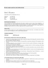 resume objective for financial services examples great customer resume objective for financial services examples great customer service good sample resume objective accounting customer service