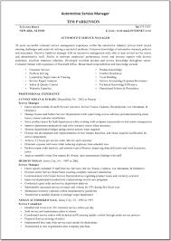 electronic resume guidelines template electronic resume guidelines