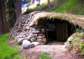 Dan Price    s cute little hobbit home cost just   to build    Architecture