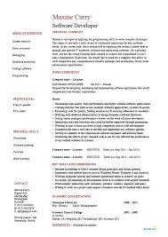 Software Developer resume  exxample  sample  application     Dayjob Software Developer resume  exxample  sample  application development  writing code  cover letters