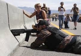 Image result for The Political Prisoners idaho bundys