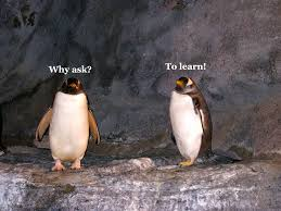 ask r2 why ask
