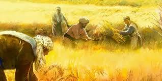 """Naquele tempo, 4 26 Jesus dizia também à multidão: """"O Reino de Deus é como um homem que lança a semente à terra."""