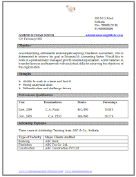 bba resume format doc word      resume templates professional