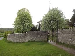 Image result for tree infront of main gate