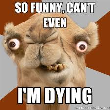 So funny, can't even i'm dying - Crazy Camel lol | Meme Generator via Relatably.com