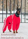 детская зимняя куртка carters отзывы