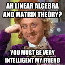 Ah Linear algebra and matrix theory? You must be very intelligent ... via Relatably.com