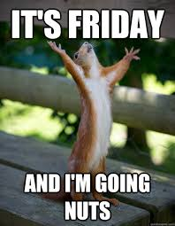 It's Friday and i'm going nuts - Nut-Crazed Happy Squirrel - quickmeme via Relatably.com