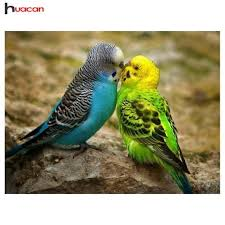 <b>Huacan Diy Diamond Painting</b> Mosaic Parrots Resin Full Round 5D ...