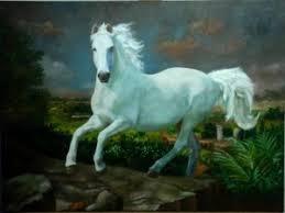 Resultado de imagem para cavalo perdido