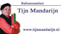 Afbeeldingsresultaat voor tijn mandarijn