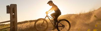 How Many Calories does <b>Mountain Biking</b> Burn? - Cyclodelic