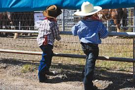 Image result for little cowboy  watching ranch rodeo