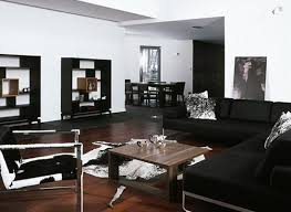 style living room furniture contemporary area