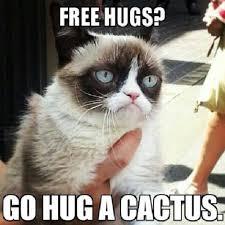 Memes Vault Sarcastic Cat Memes via Relatably.com