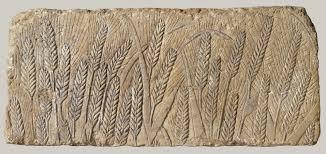 in the new kingdom ca b c essay heilbrunn ripe barley