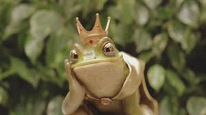 Image result for KING FROG