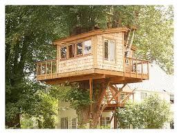Great Tree House plans and designs    tree house designs and plans   and Treehouse Designs idea