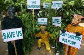 what are the methods to propagate environmental awareness