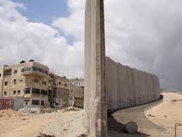 Résultats de recherche d'images pour «activistes pro-palestiniens»