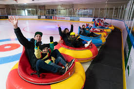 Ice <b>Bumper Cars</b> — Queenstown Ice Arena