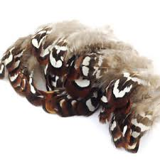 <b>50pcs</b> 2-3 Inch <b>Natural Pheasant Feathers</b> for Floral Art Hat ...