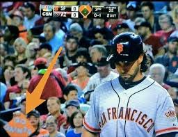 "MLB Memes on Twitter: ""Some #SFGiants fans aren't too bright ... via Relatably.com"