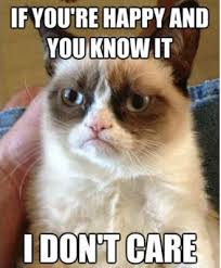 best-funniest-grumpy-cat-4.jpg via Relatably.com