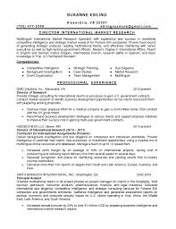 cv format for s and marketing s executive resume chief cv format for s and marketing cv format for s and marketing