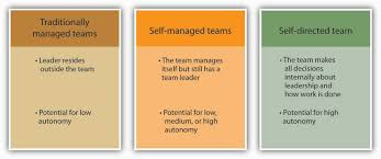 13 4 understanding team design characteristics principles of team leadership is a major determinant of how autonomous a team can be