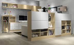 Living Room Cabinets Designs Affordable Elegant Living Room Cabinets