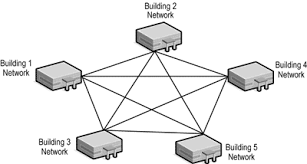 introduction to networking   unit  sec dmesh network topology