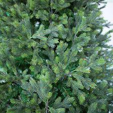 Искусственная <b>ель Greentrees Грацио</b> Премиум 240 см в ...