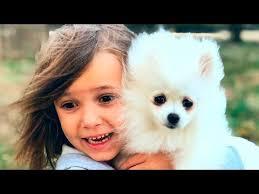 Катя и Макс купили собачку - YouTube