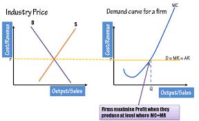 Pure Monopoly Unit Overview Assumptions of the Pure Monopoly     Economics Discussion