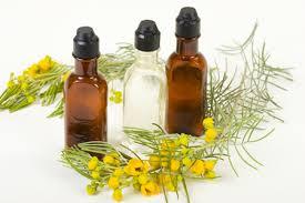 Resultado de imagen para aromaterapia y los signos zodiacales